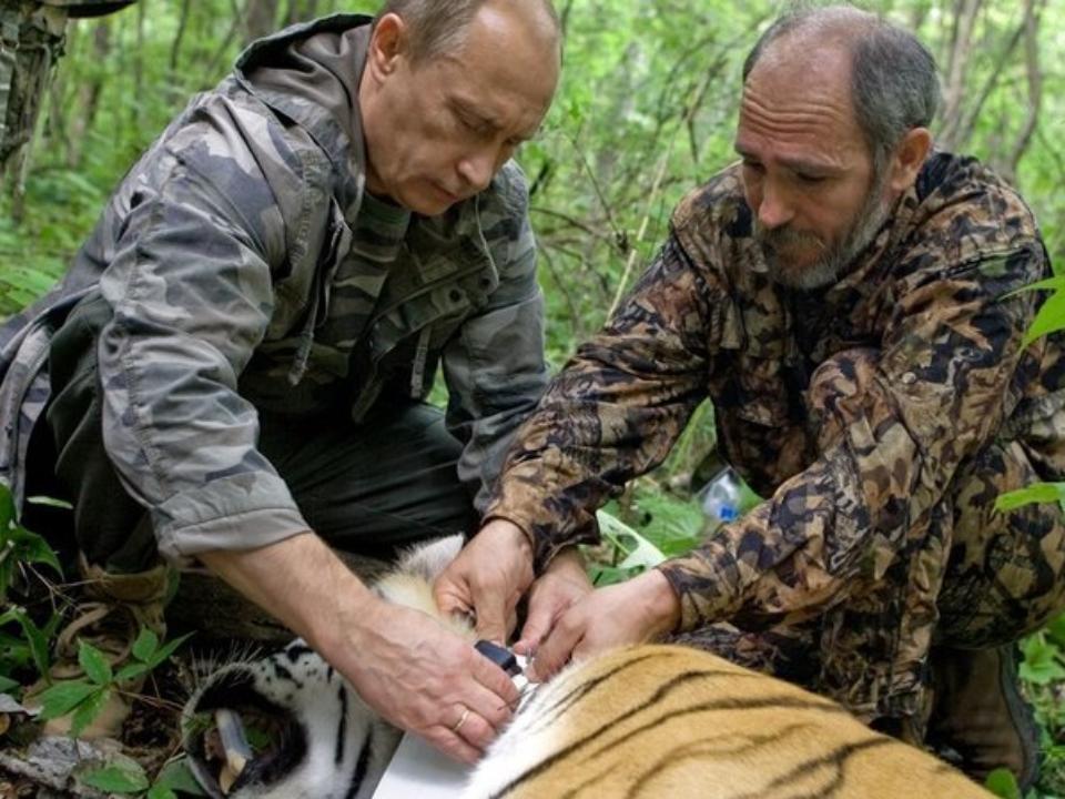 Путин помогает экологии