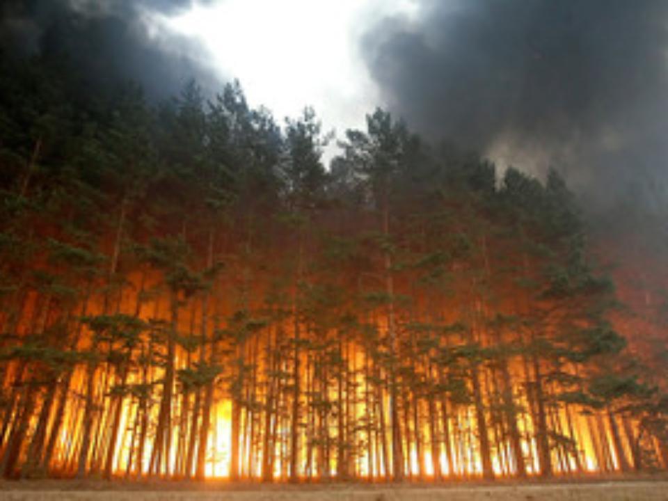 Насевере Бурятии действуют три лесных пожара