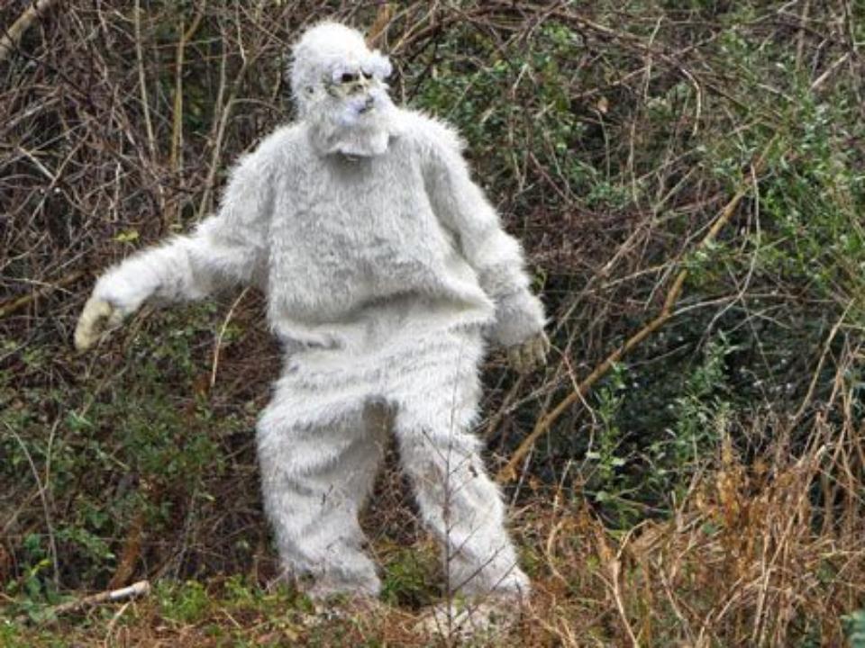Йети  снежный человек  очевидное невероятное