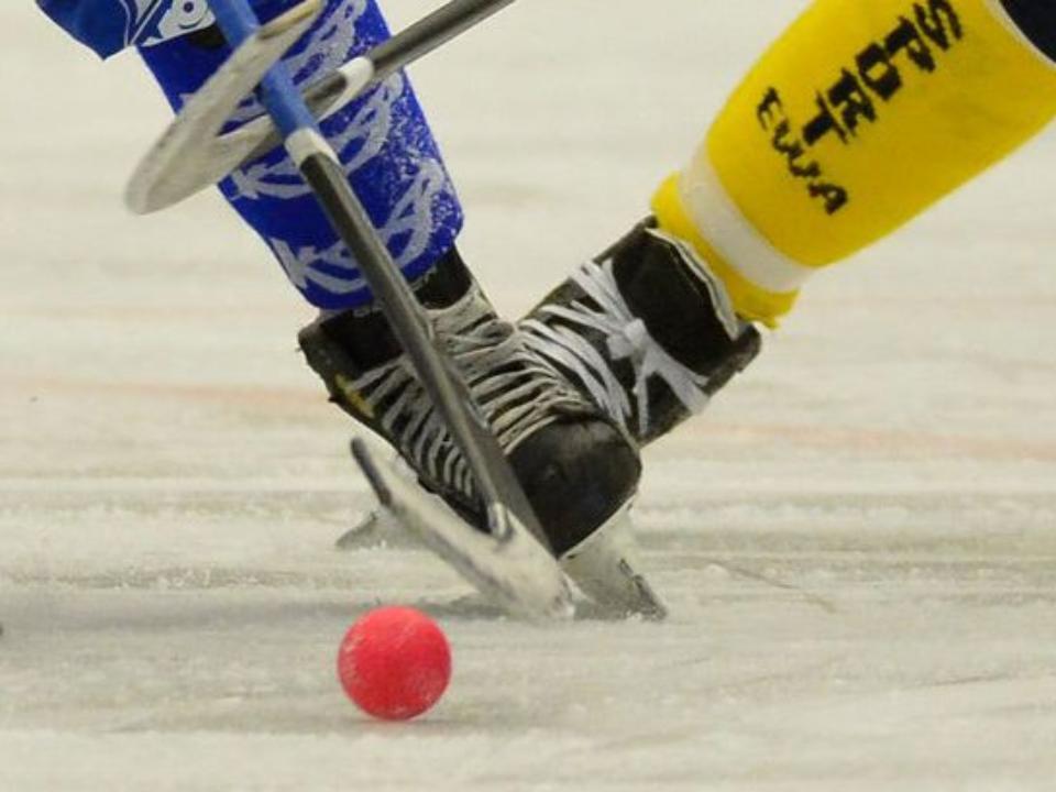 Исполком FIB проголосовал запроведение чемпионата мира 2019 года вИркутске