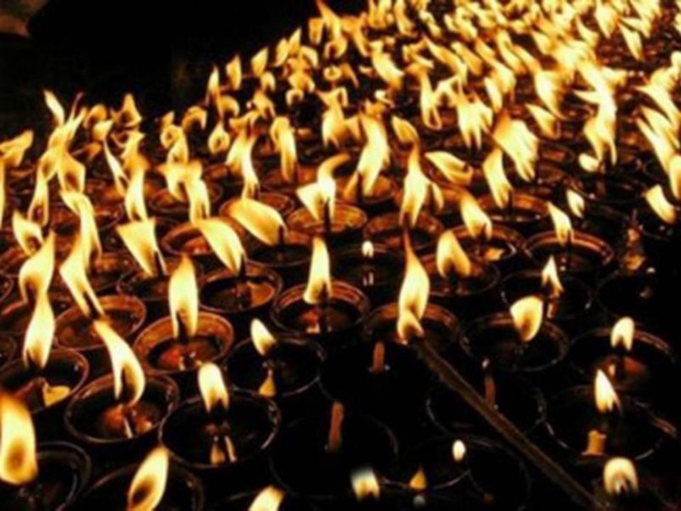 Число жертв ототравления «Боярышником» возросло до 74