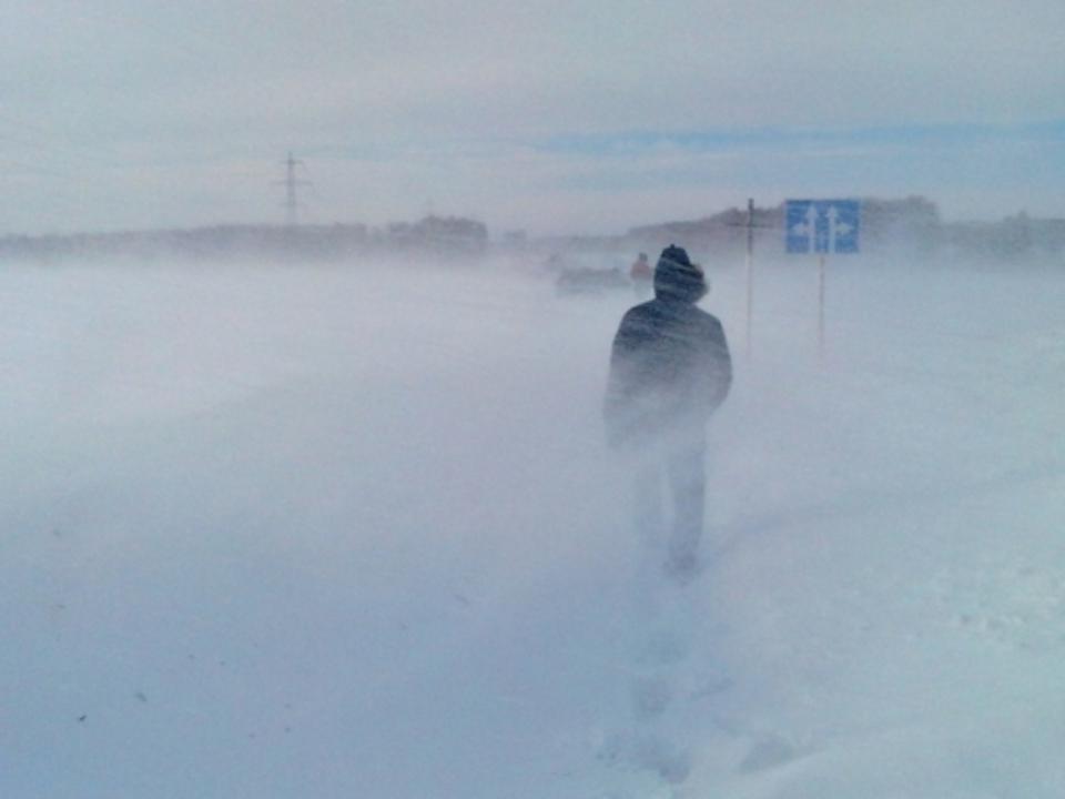 ВАлтайском крае без вести пропал 37-летний мужчина