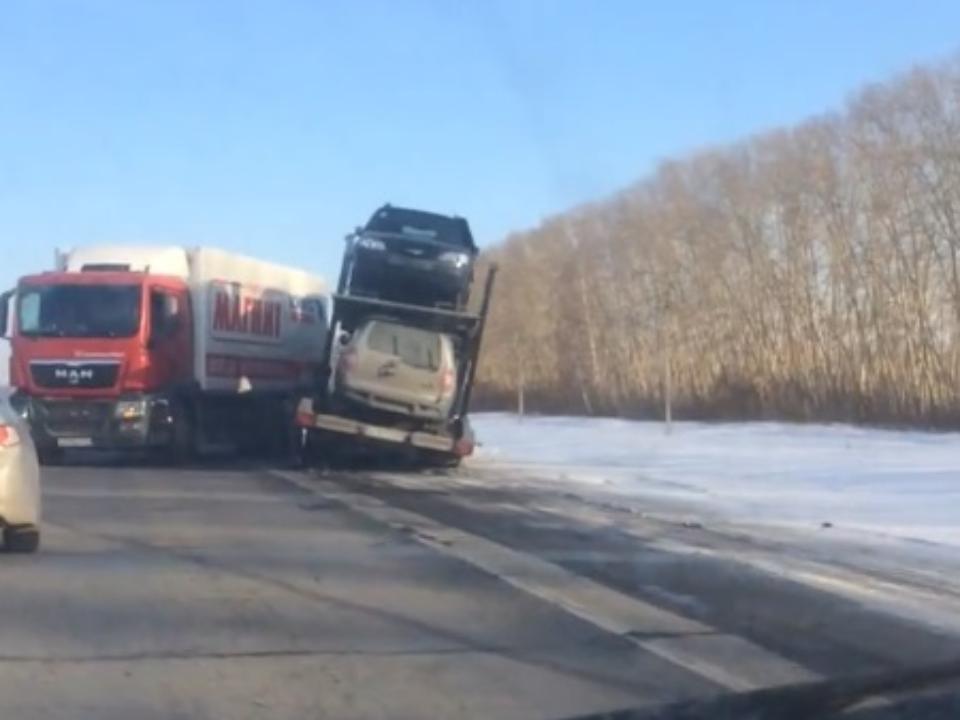 Натрассе вКемеровской области случилось ДТП сфурой иавтовозом