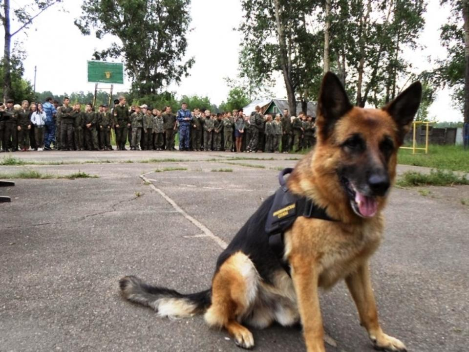 ВИркутске усилят меры антитеррористической безопасности