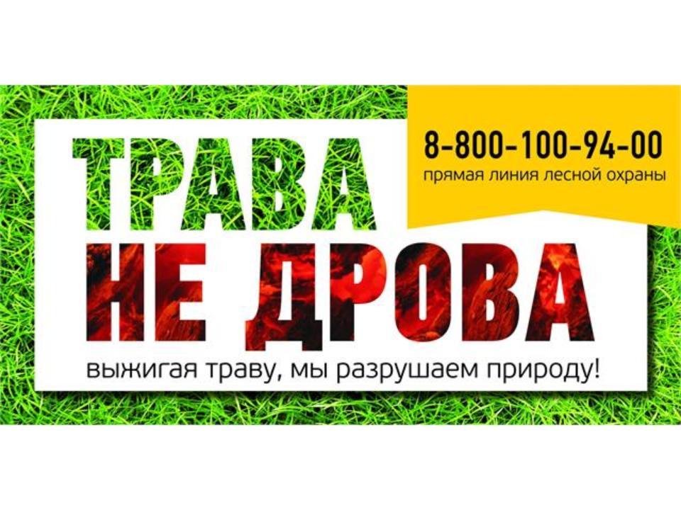 Три новых лесных пожара зафиксировано вХабаровском крае