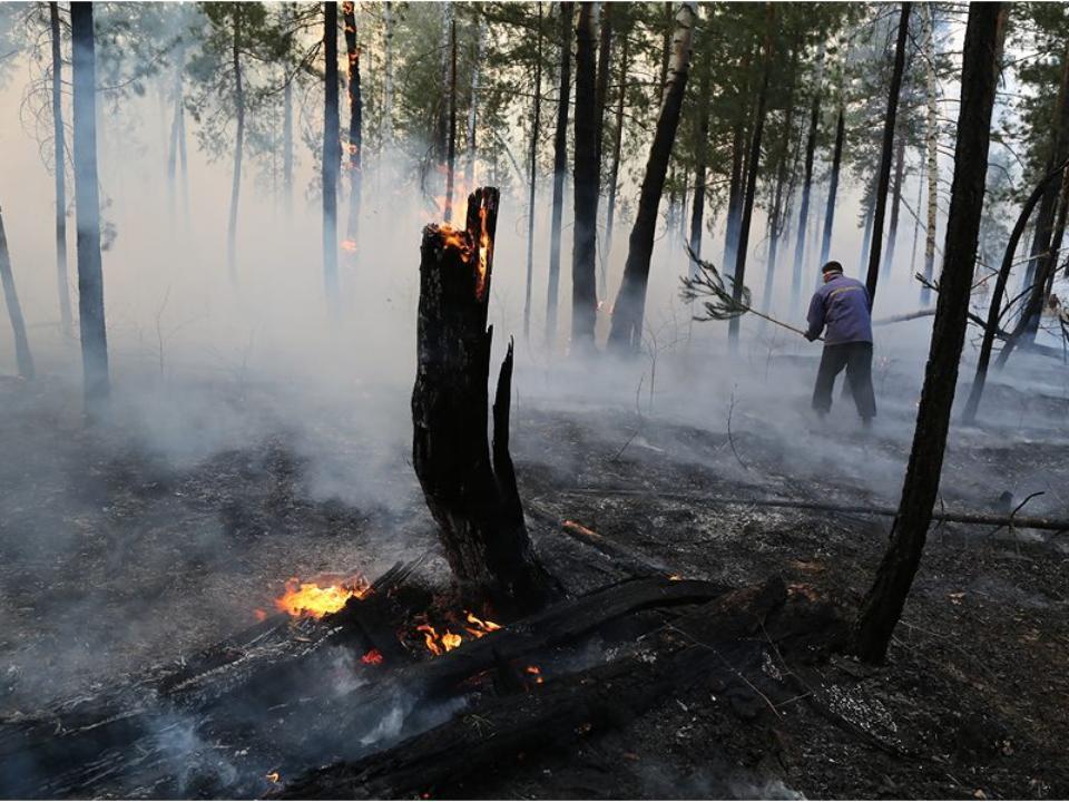 ВБурятии зарегистрировано шесть лесных пожаров