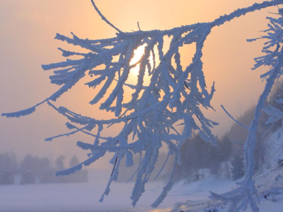 Прогноз непогоды: вИркутской области предполагается до-48 °C