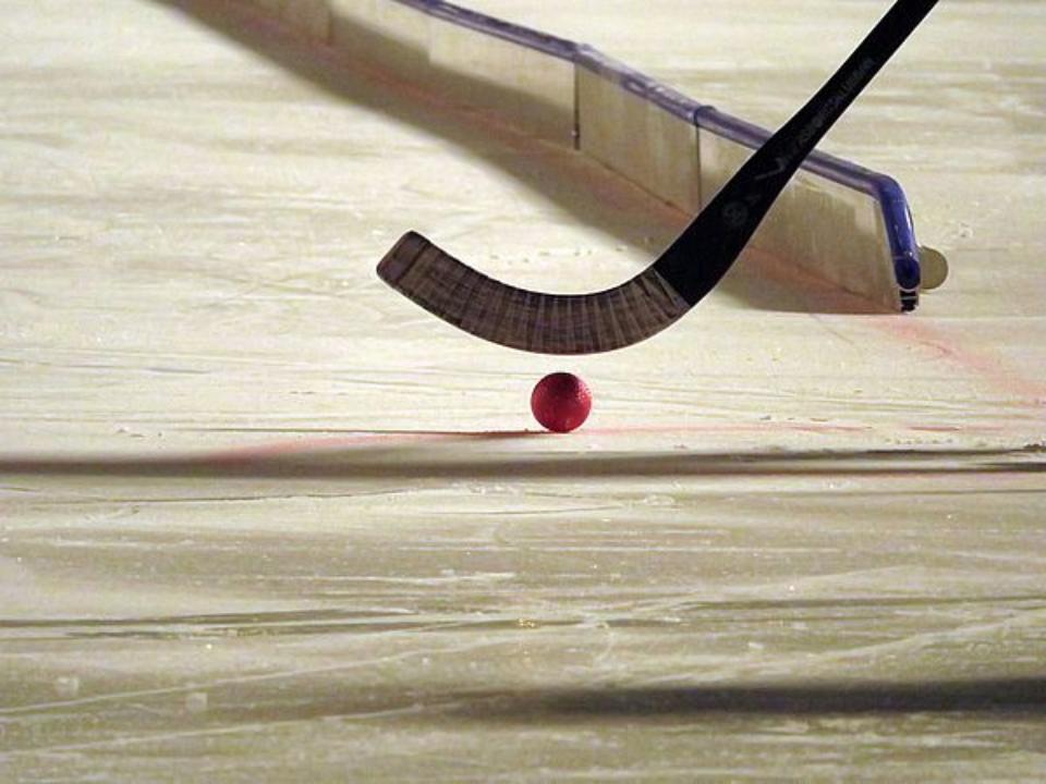 Сборная Российской Федерации  похоккею смячом стала 11-кратным чемпионом мира