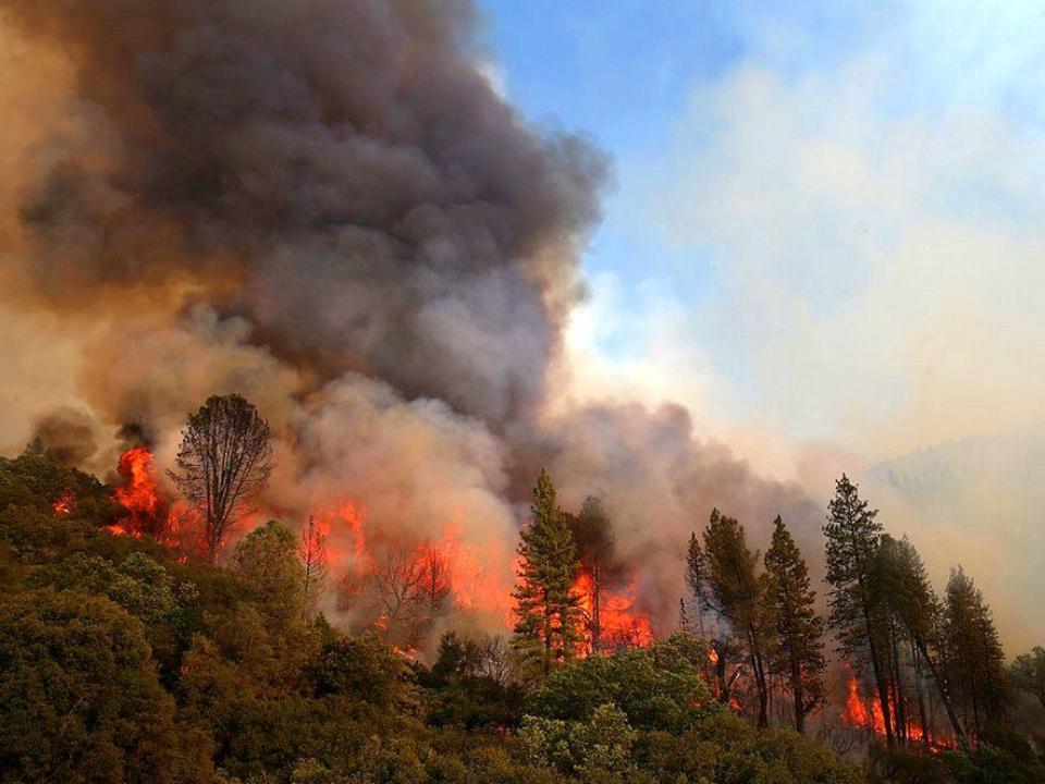 16 лесных пожаров действует вИркутской области