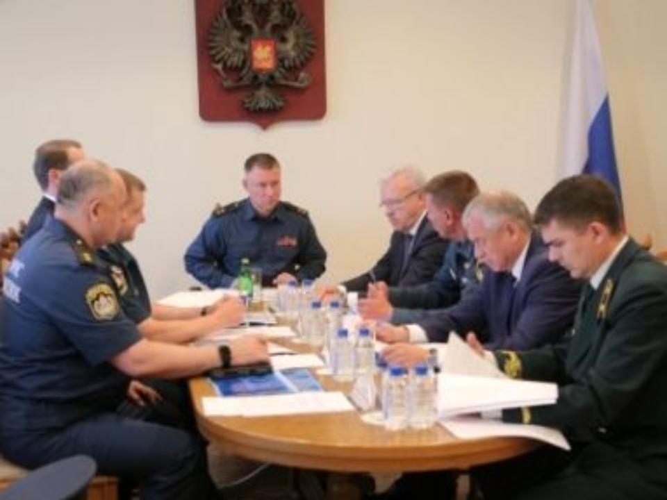 Вчетырёх областях РФ действует режимЧС из-за лесных пожаров