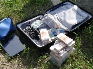 Деменция? Житель Биробиджана забыл на улице чемодан с 15 миллионами рублей